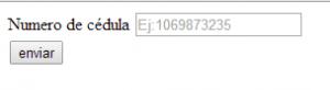 input html5
